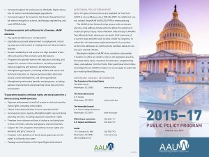 Download the Public Policy Program brochure